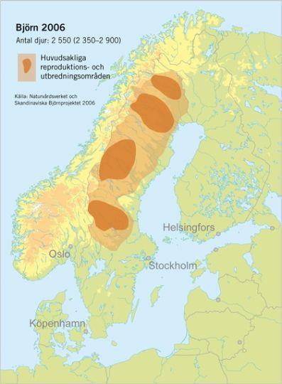 baeren-in-schweden-gebiete