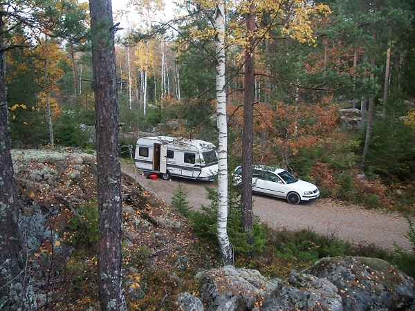 Wald vor Stockholm